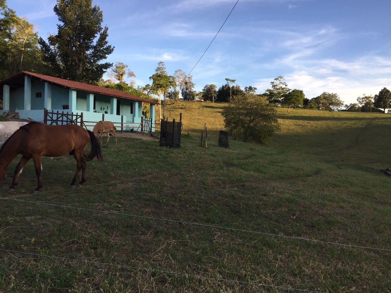 FZ 014 – Fazenda com 280 hectares