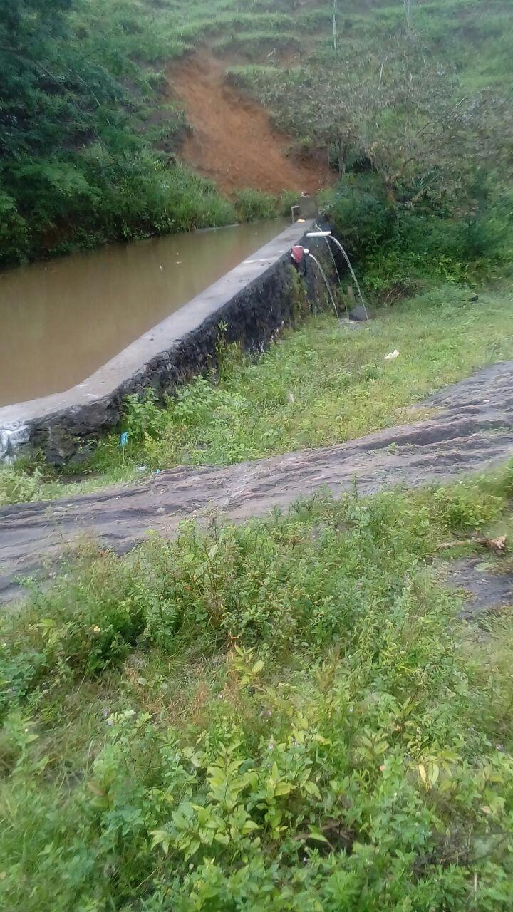 FZ 032 – Fazenda com 48 hectares e riacho dentro