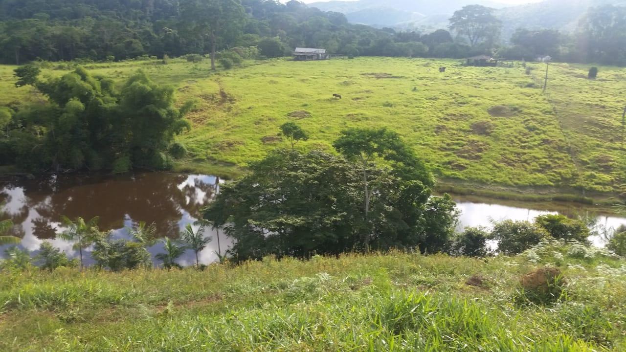 FZ 094 – Fazenda Com 108 Hectares